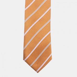 Västervik slips rost